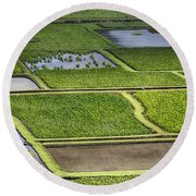 Rice Paddies Round Beach Towel