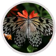 Rice Paper Butterfly Elegance Round Beach Towel