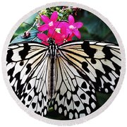 Rice Paper Butterfly On Pink Round Beach Towel