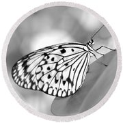 Rice Paper Butterfly Resting For A Second Round Beach Towel