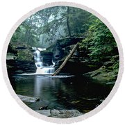 Ricketts Glen Falls 016 Round Beach Towel