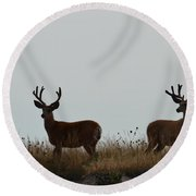 Ridge View Round Beach Towel