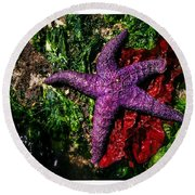 Right At Home Round Beach Towel