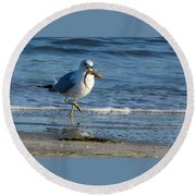Ring-billed Gull With Its Catch Round Beach Towel