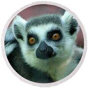 Ring Tailed Lemur-2 Round Beach Towel