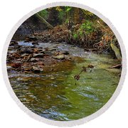 River Bank Round Beach Towel