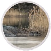 River Rock And Reeds Round Beach Towel