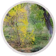 Riverbank Colors Round Beach Towel