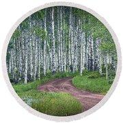 Road Through A Birch Tree Grove Round Beach Towel