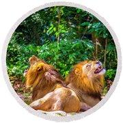 Roaring Lions Round Beach Towel