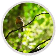 Robin In The Glade Round Beach Towel