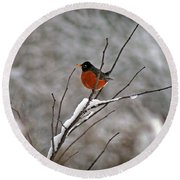 Robin In Winter Round Beach Towel