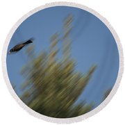 Robin Projectile Round Beach Towel