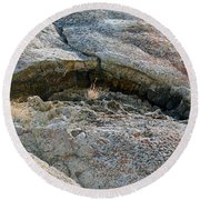 Rock Mouth Round Beach Towel