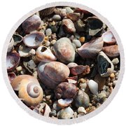 Rocks And Shells Round Beach Towel