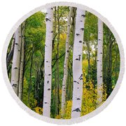 Rocky Mountain Aspen Forest Round Beach Towel