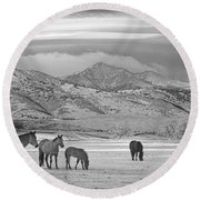 Rocky Mountain Country Morning Bw Round Beach Towel