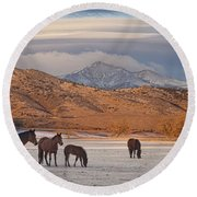 Rocky Mountain Country Morning Round Beach Towel