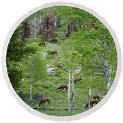 Rocky Mountain Elk Herd Round Beach Towel