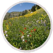 Rocky Mountain Wildflower Landscape Round Beach Towel