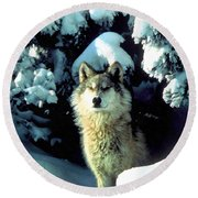 Rocky Mountain Wolf Round Beach Towel