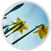 Rodchenko's Daffodils Round Beach Towel