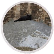 Rome Cat Round Beach Towel