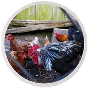 Rooster And Chickens Round Beach Towel