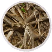 Root System Round Beach Towel
