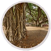 Roots - Banyan Tree Park In Maui Round Beach Towel