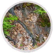 Roots And Rocks Round Beach Towel