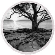 Roots Beach In Black And White Round Beach Towel