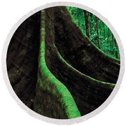 Roots Of A Giant Tree, Daintree Round Beach Towel