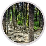 Roots Of Trees Round Beach Towel