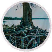 Roots On The Bay Round Beach Towel