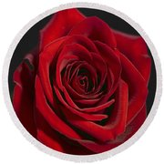 Rose 11 Round Beach Towel