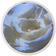 Rose 186 Round Beach Towel by Pamela Cooper