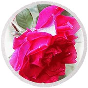 Rose - 4505-004 Round Beach Towel