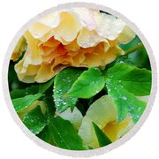 Rose And Leaves On A Rainy Day Round Beach Towel