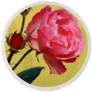 Rose And Rose Buds Round Beach Towel