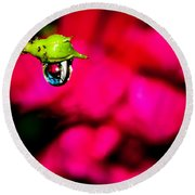 Rose Bud After Rain Round Beach Towel