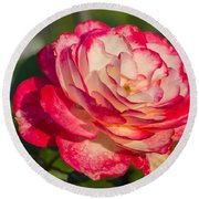 Rose Delight Round Beach Towel