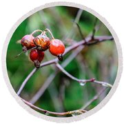 Rose Hip Wet Round Beach Towel