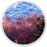 Rose Hips By The Seashore Round Beach Towel