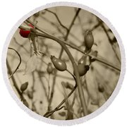 Rose Hips Round Beach Towel