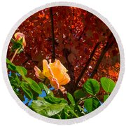 Rose In Autumn Round Beach Towel