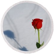 Rose In Snow Spring Approaches Round Beach Towel