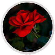 Rose Is A Rose Round Beach Towel by Robert Bales