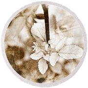 Rose Leaf Photoart Round Beach Towel