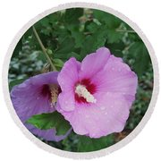 Rose Mallow Round Beach Towel